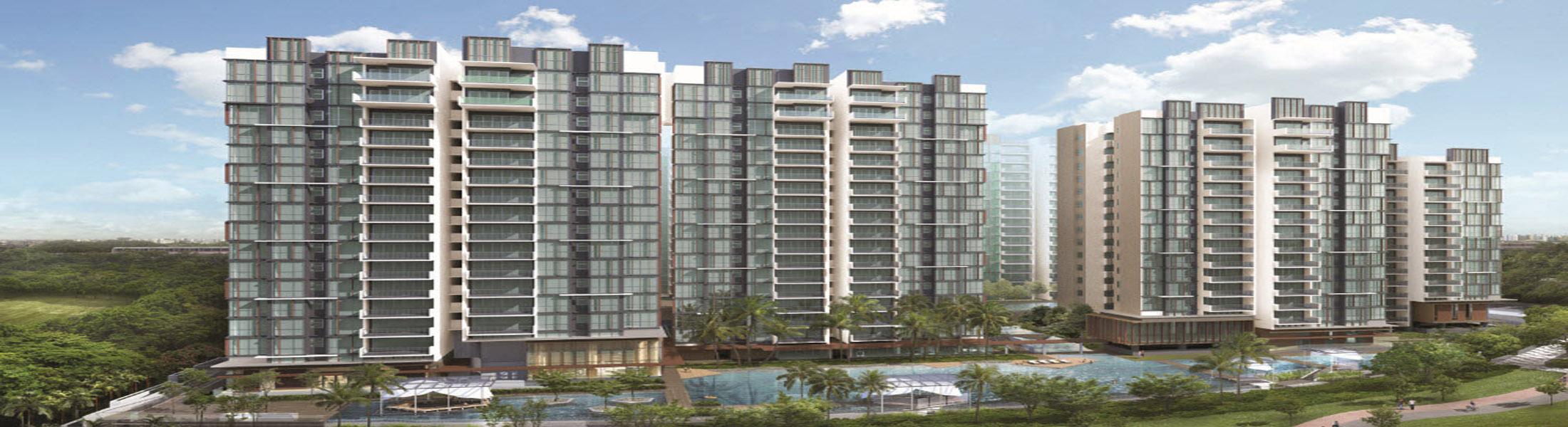 The terrace executive condo propertyfactsheet for Use terrace in a sentence