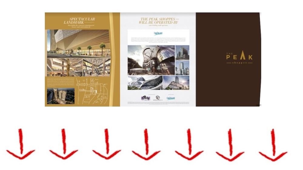 Download Peak Shoppes Brochure